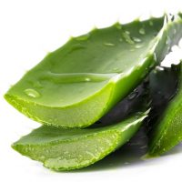 Aloes do picia Forever Living – źródło energii i vitalności